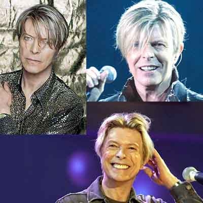 2003 bowie